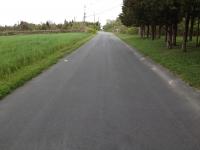 laneway mishaun 2