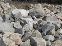 disney-and-rock-pics-094