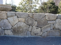 Natural Wall